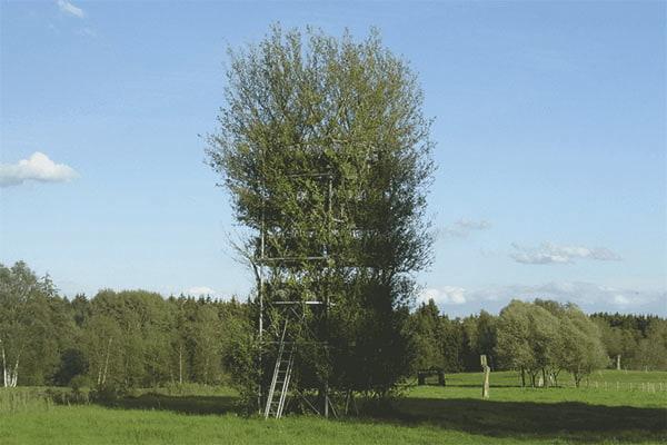 Botanischer-Turm